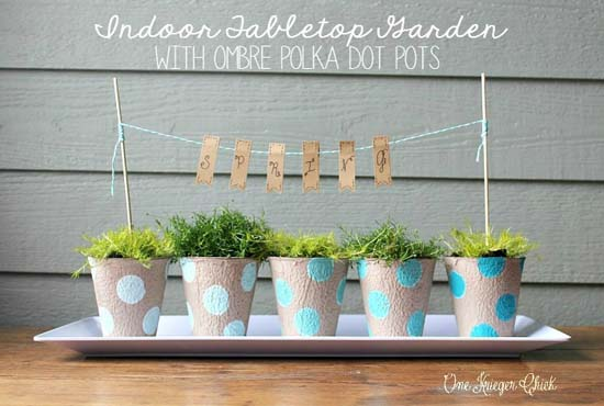 Indoor-Garden-with-ombre-polka-dot-painted-pots